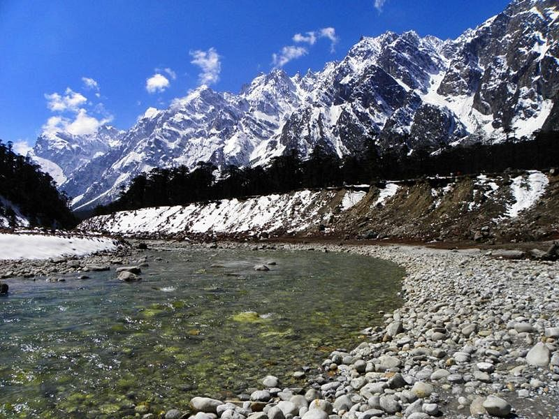 Yumthang Valley<br />Picture credits: www.indiamarks.com