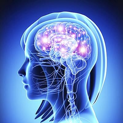 Violence and adversity at early age affects brain
