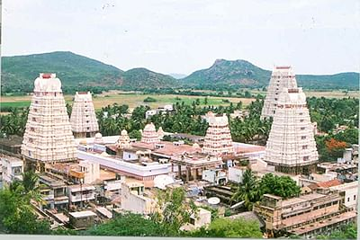 Rameswaram offers more than temple tourism