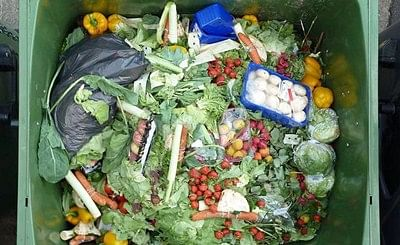 Europeans recognise responsibility to prevent food waste