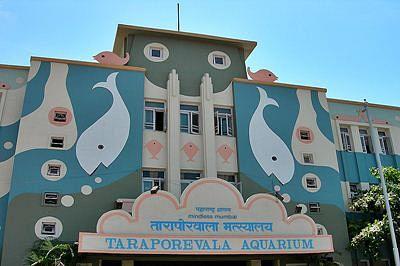 Activist urges Maha govt to reduce Aquarium entry fees
