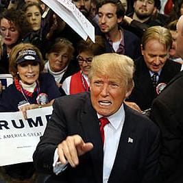 Amidst layoffs, Trump urged to pause H1B visa programme