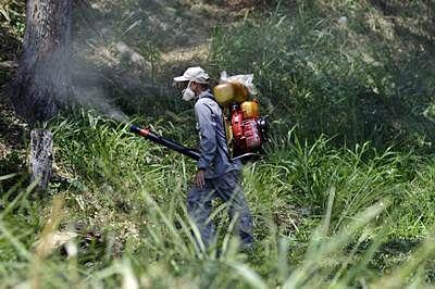 Venezuela reports 4,700 suspected Zika cases