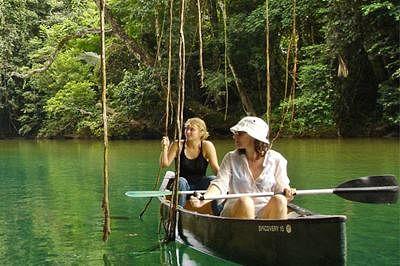 Ecotourism doesn't hurt wildlife