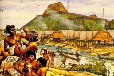 Social diversity to blame for Cahokia' collapse