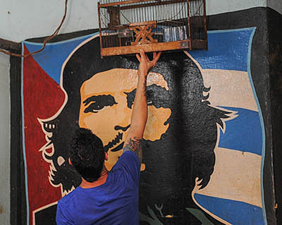5 things you ought to know about the world's favourite rebel
