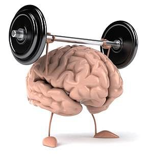 The muscles of the mind