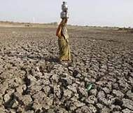 Experts warns Marathwada heading towards 'desertification'
