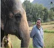 After 40 years, Rhea rescued from Tamil Nadu circus