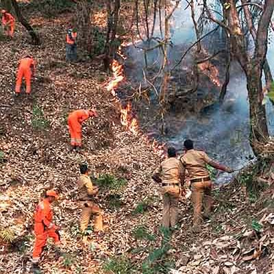 Indore: Fire damages 1 hectare forest in Devguradia
