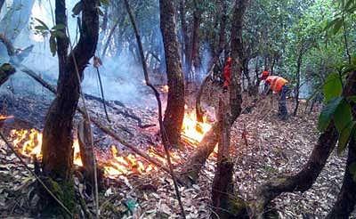 Eco disaster unfolds in Uttarakhand hills
