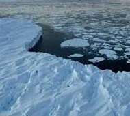 Why sea ice cover around Antarctica is rising?