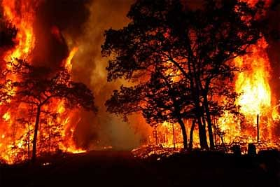 Uttarakhand Fire: Flames of 'apathy' spread