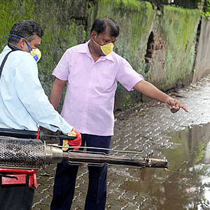 Leptospirosis cases increased by 32 per cent in the city