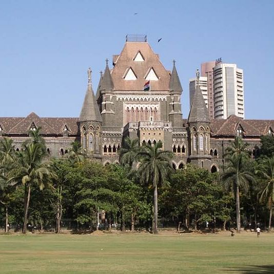 Despite having numerous trees and species, Aarey isn't a forest, rules Bombay High Court