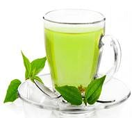 Green tea may help treat Down's syndrome: study