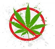 Three held with 6.6 kg weed at LTT railway station