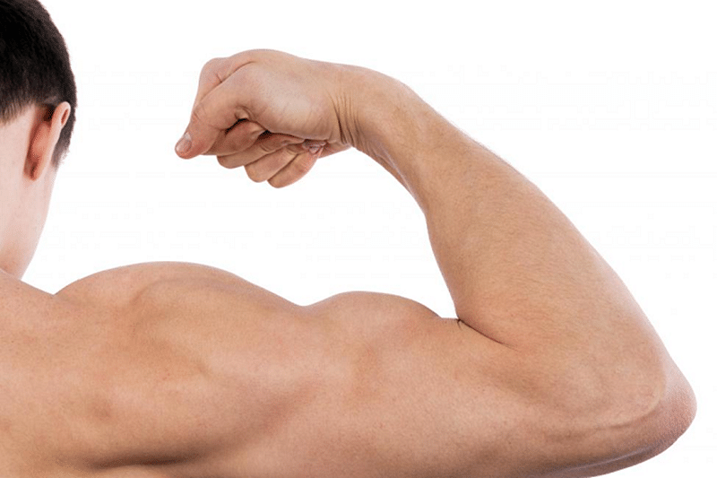 Protein that can boost growth of damaged muscle tissue