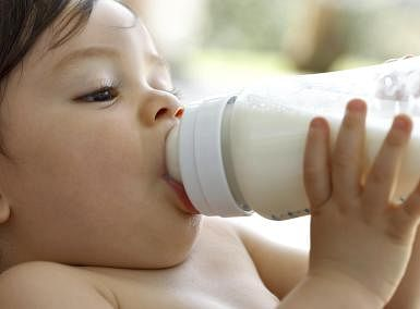 High-fat diet in pregnancy may impact baby's gut, immune system