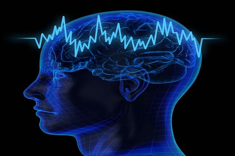 Brain plays key role in gauging errors