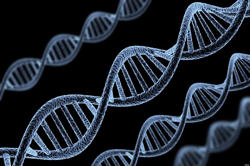 Don't blame genes for all diseases that run in families