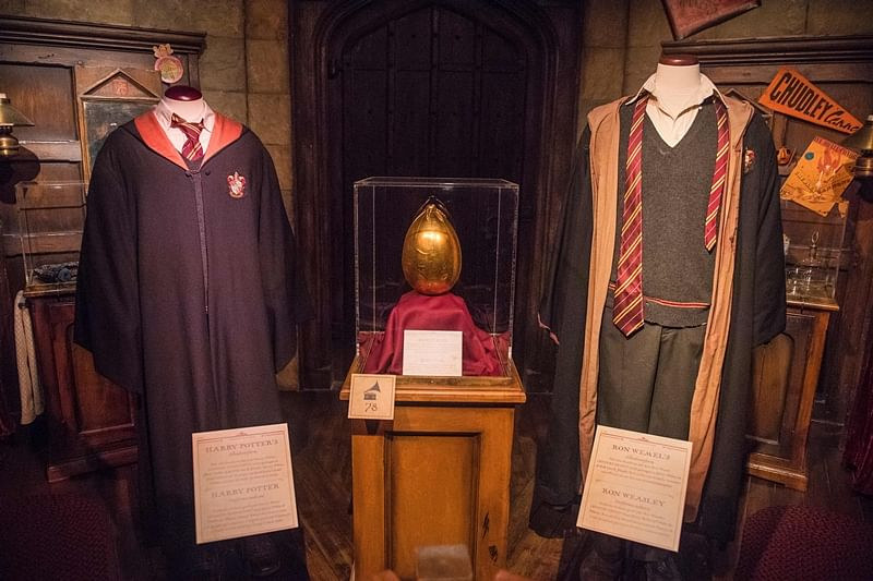 What's Harry Potter's most recognisable symbol in India?