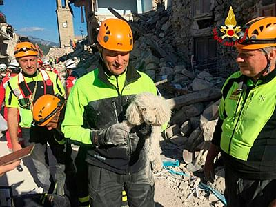 Italy earthquake: Eight-year-old girl dies protecting her younger sister