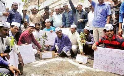 AAP plants saplings in potholes in city roads