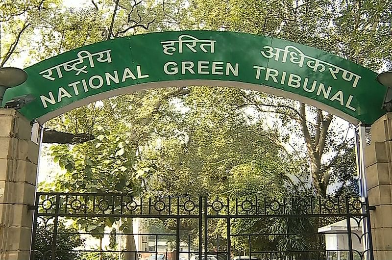 NGT directs Madhya Pradesh govt to remove construction under PMAY on forest land in Shivpuri