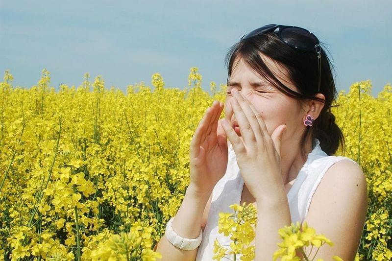 Seasonal allergies may cause changes in the brain