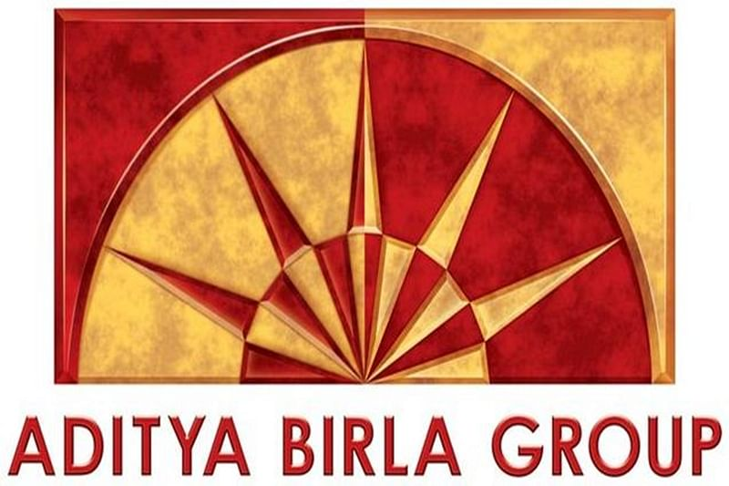 Birla flags liquidity crunch, high spectrum fee concerns to government