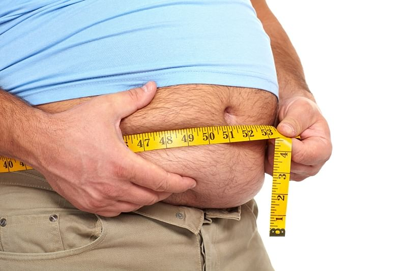 Now, molecule links weight gain to gut bacteria
