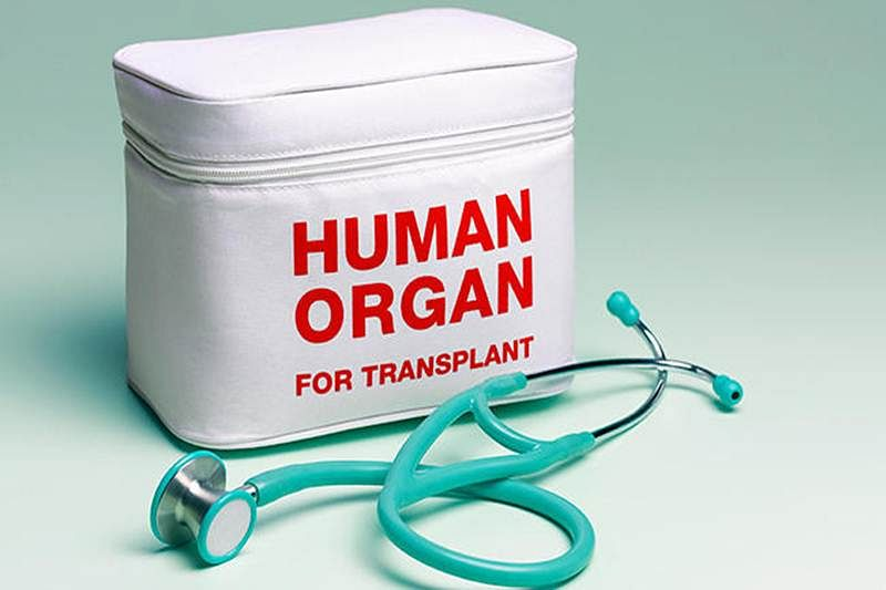 Maharashtra govt tells Bombay High Court: Have made draft guidelines for emergency organ retrieval