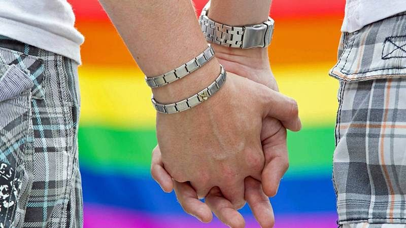 Unveiled: Asia's 1st gay marriage bill