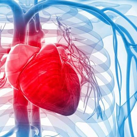 Protein therapy may improve heart attack outcomes