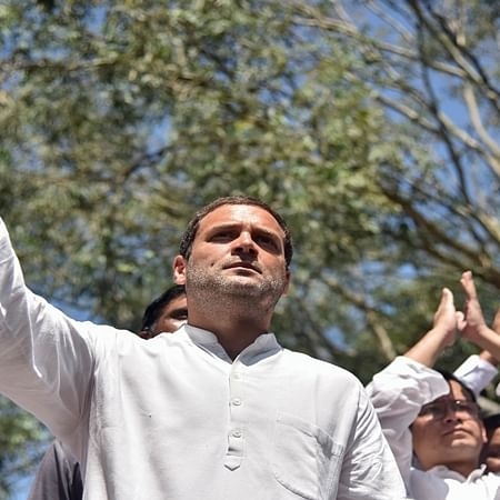'Remark about Amit Shah' Rahul pleads not guilty, gets bail
