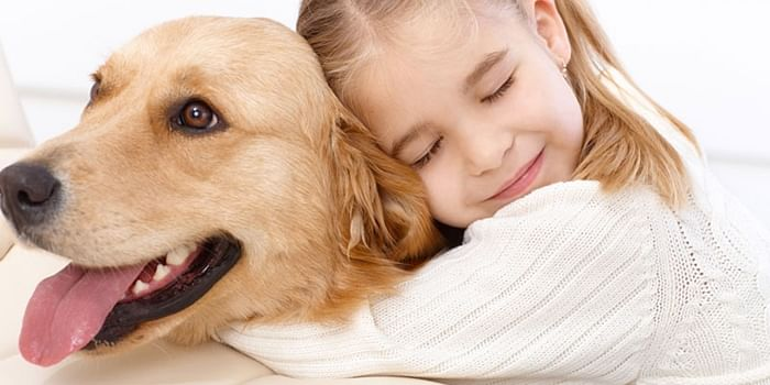 Feeling homesick? Try pet therapy