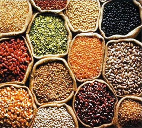 Cabinet lifts ban on export of pulses