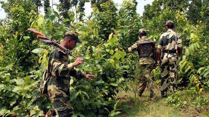 Top Naxal leaders among 21 killed in encounter at Andhra-Odisha border