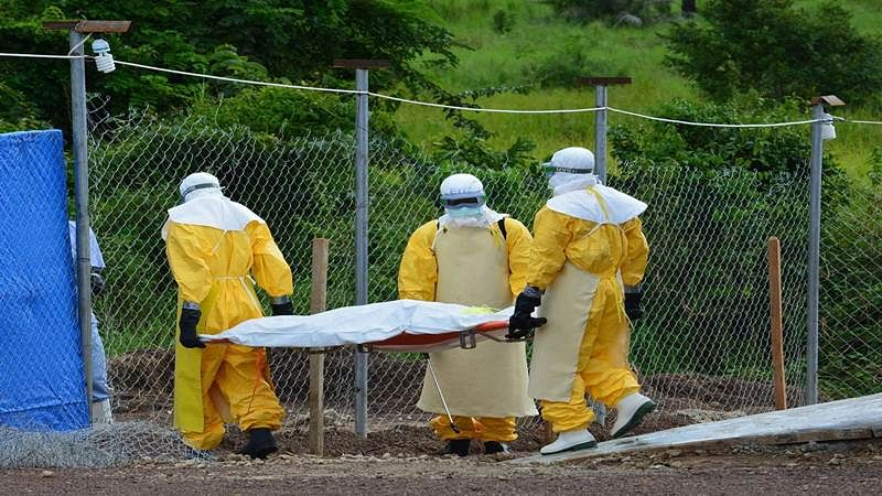 Ebola may have mutated to better infect humans: Study