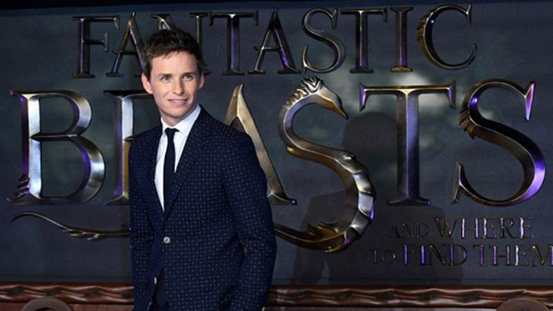 Fantastic Beasts actor Eddie Redmayne: I often wonder if I'll be employed again