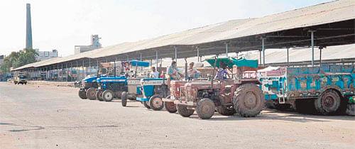 Ujjain: Business restarts at Krishi Upaj Mandi, but with slow speed