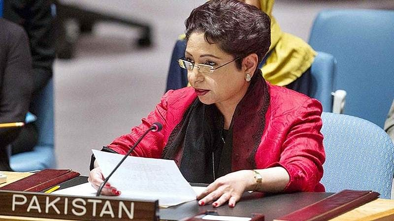 Pakistan action on terror dossier only if proof is solid: Maleeha Lodhi