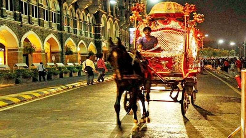 Maharashtra panel to find ways for rehabilitating Victoria owners