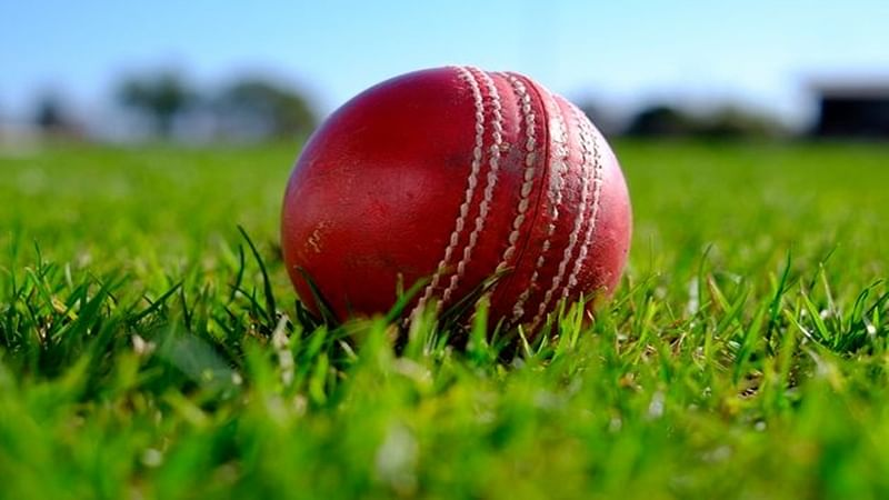 Video of assault on local cricketer in Goa goes viral, 2 arrested