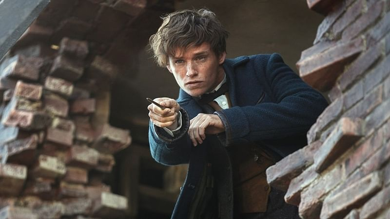 Fantastic Beasts and where to find them, will touch a cord with Potterheads