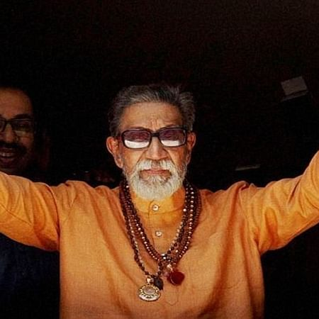 Aurangabad: Officials asked to document trees at Bal Thackeray's memorial site