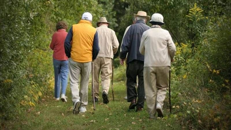 Walking style can predict memory, thinking decline: study