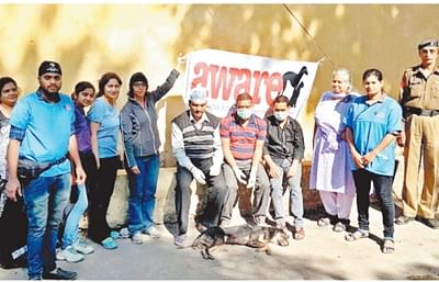 Indore: INTACH lays stress on revival of water bodies