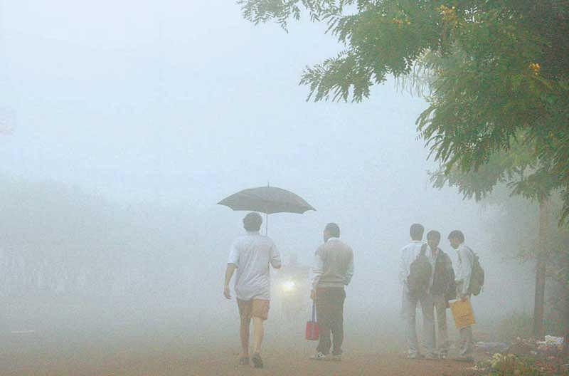 Rain in Chandigarh and parts of Punjab, Haryana brings down temperature